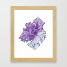 Lace Iris Framed Art Print