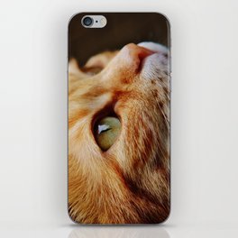 cat face 4 iPhone Skin