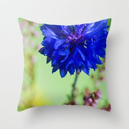 Beauty of blue cornflower Throw Pillow
