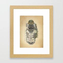 caterpillar of spangle Framed Art Print