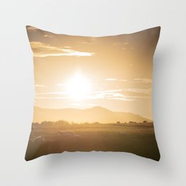 Sheep grazing in Lake District at sunset in England Throw Pillow