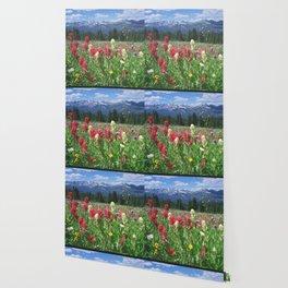 Wildflowers above Breckenridge, Colorado Wallpaper