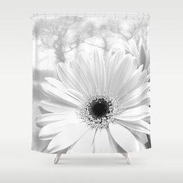 Winter White Gerbera Daisy A199 Shower Curtain