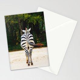 Shy Zebra Stationery Cards