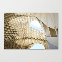 Wooden waves Canvas Print