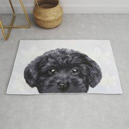 Toy poodle Black Rug