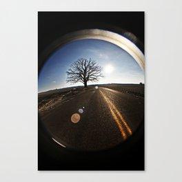 big burr oak Canvas Print