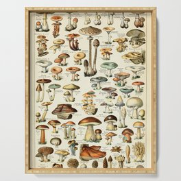 Vintage Mushroom & Fungi Chart by Adolphe Millot Serving Tray