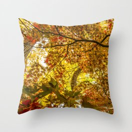 Fall Leaves: Beautiful Colorful Leaves from Central Park Throw Pillow