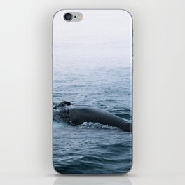 Humpback whale in the minimalist fog - photographing animals iPhone Skin