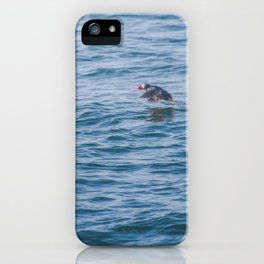 Cute Puffin takes off from the water iPhone Case