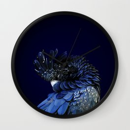 Australian Red-Tailed Black Cockatoo in Blue Wall Clock