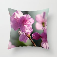 Towards the Light Throw Pillow