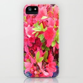 Sweet Fuchsia   iPhone Case