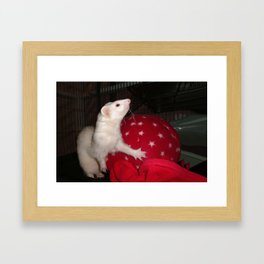 The Ivory Ferret and the Starry Red Bouncy House Framed Art Print