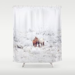 Two Winter Horses Shower Curtain