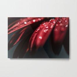 Red Velvet Petals Metal Print