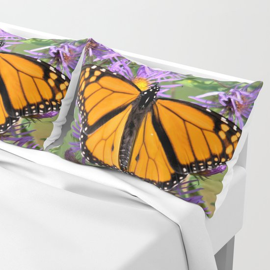Monarch Butterfly on Wild Asters (square) by nancyacarter