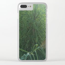 Morning Dew On Cattails Clear iPhone Case