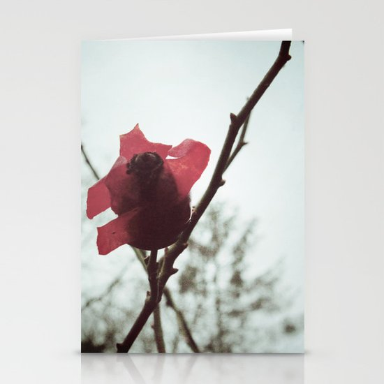 Rosehip Stationery Cards