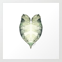 Watercolour Leaf Art Print