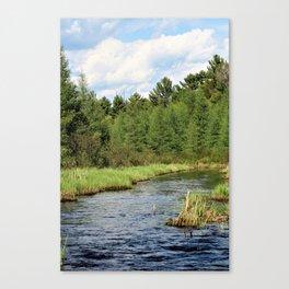 Sawyer / Jessie Canvas Print