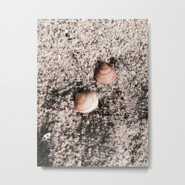 Shells and Sand Metal Print