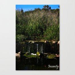 Insanity Photography Canvas Print