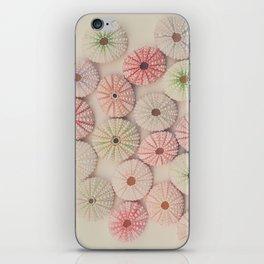 Sea Urchins  iPhone Skin