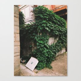 you lost your pizza Canvas Print