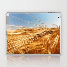treasures of summer Laptop & iPad Skin