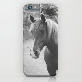 Horse III _ Photography iPhone Case