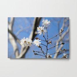 Cadman Floral Metal Print