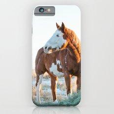 Pferd Slim Case iPhone 6s