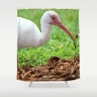 hunting Shower Curtains featuring Ibis Hunting by Riaora Creations