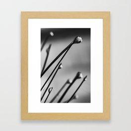 Water Drop Framed Art Print