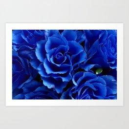 Blue Roses Flowers Plant Romance Art Print