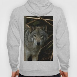 Timber Wolf Hoody