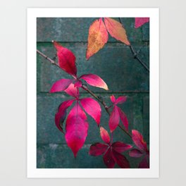 Autumn Splendour Art Print