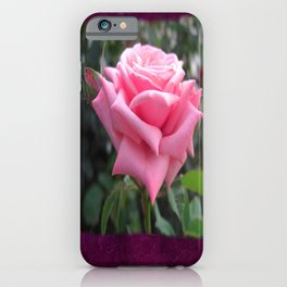 Pink Roses in Anzures 6 Blank P8F0 iPhone Case