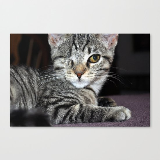 One-Eyed Wonder Canvas Print