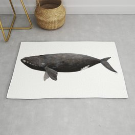 Northern right whale (Eubalaena glacialis) Rug