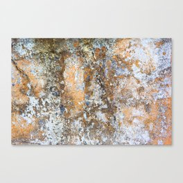 Painted Stone Textures 80 Canvas Print