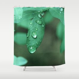 Drip (Hawaii) Shower Curtain