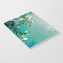 Spring Synthesis IV Notebook