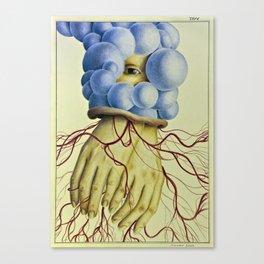 Wunderkammer Tav.6 Canvas Print