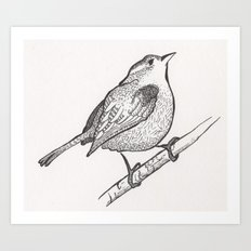 Wren on a Branch Art Print