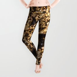 Millipede Leggings