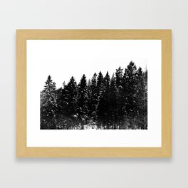 Forest Dark IV Framed Art Print
