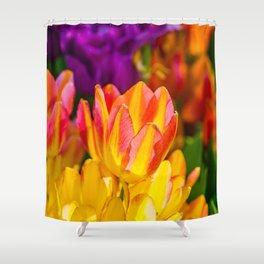 Tulips Enchanting 09 Shower Curtain